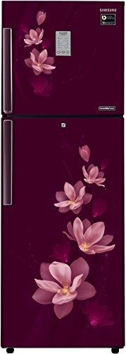 Samsung 275L 4 Star Frost Free Double Door Refrigerator (RT30M3954R7/HL, Magnolia Plum, Convertible, Inverter Compressor)