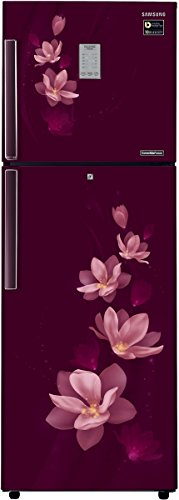 Samsung 275 L 4 Star Frost-free Double Door Refrigerator (RT30M3954R7/HL, Magnolia Plum)