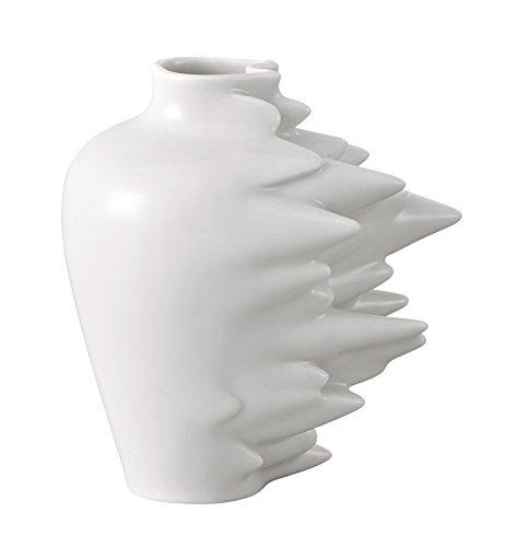 Vase,Blumen,Zapfen,Rosenthal
