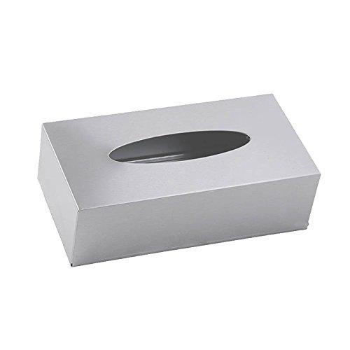 HOUSEPROUD matte steel tissue box cover, matte stainless steel