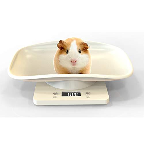 Pet Scale, DFVVR...