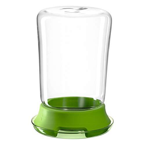 montana :kitchen Sprossenglas, 2-tlg. Set, Durchmesser 12,7cm, Glas, Edelstahl und Silikon, 057213 -