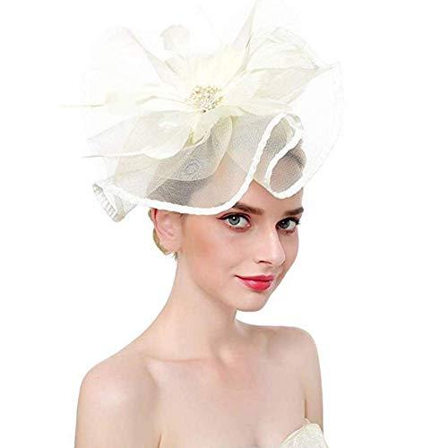 Hut Rose Feder Net Mesh Kentucky Derby Tee-Party Kopfbedeckung mit Haarspange und Haarband für Frauen oder Mädchen,M ()