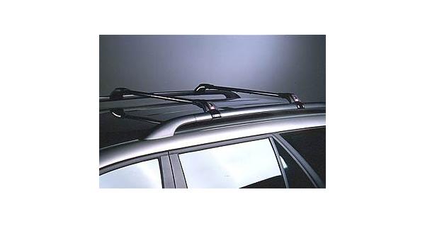 ProWagon Barre PORTATUTTO ANTIFURTO per AUTOVETTURE con MANIGLIONI cod 4373005