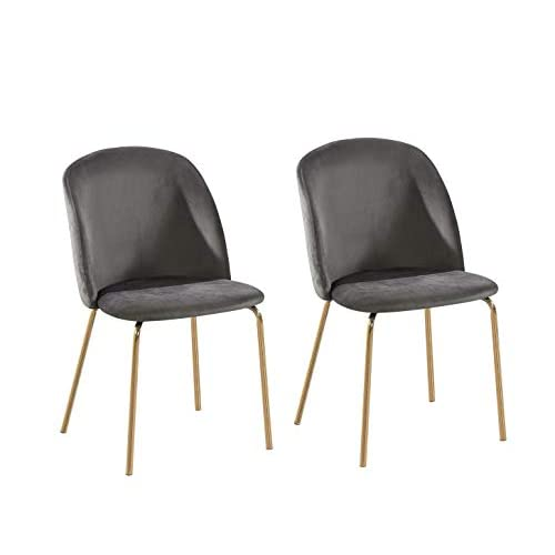 Set of 2 Velvet Fabric Dining Chairs with Golden Finish Metal Legs Living Room Chair Dale (Grey)