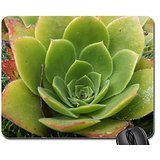 moss-and-flower-mouse-pad-mousepad-flowers-mouse-pad