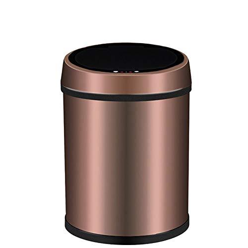 Dapang USB Edelstahl Automatische Mülleimer, Breite Öffnung Sensor Kitchen Trash Bin, Stromversorgung über USB (Geschenk) für Wohnzimmer Küche Badezimmer Büro,6L -