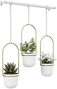 "Umbra Triflora Hanging Planter for Window 42"" Width 101174"