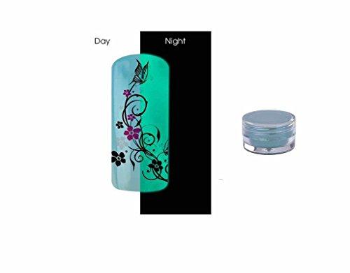 Poudre Phosphorescent Gel uv ongles - Brille la nuit - Bleu REF8583