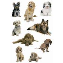 Preisvergleich Produktbild Herma 3432 Sticker DECOR Hundefotos