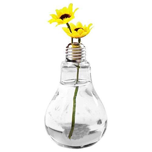 JUNGEN Vase en Verre Transparent Vase Air Plant Terrarium Succulent Planter Conteneu