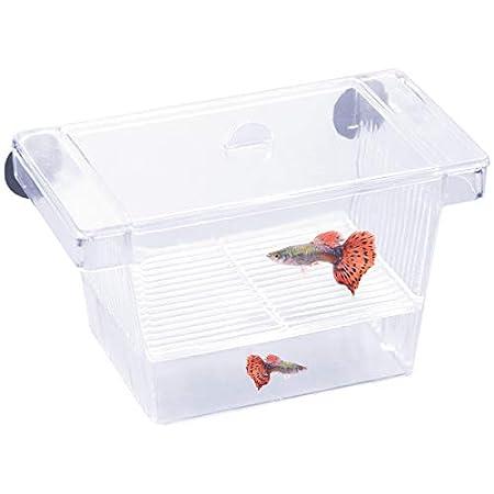 Netspower Aufzuchtbehälter Ablaichstation Breeding Box Ablaichkasten Zucht Isolation Box für Fische Garnelen mit 2…