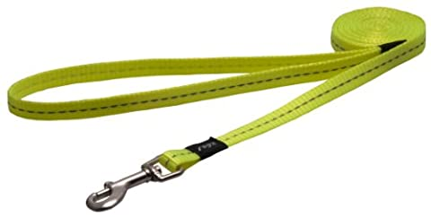 Reflective Dog Leash for Small Dogs, 3/8