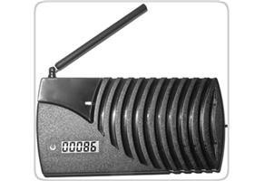 RODANN Electronics Wireless Auffahrt Alarm-Empfänger (Einfahrt Wireless Alarm)