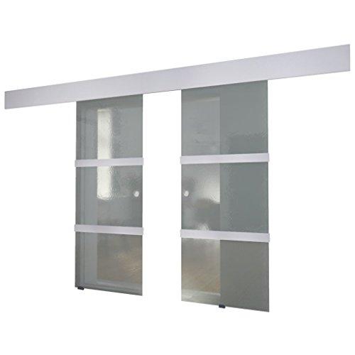 vidaXL Schiebetür Doppel Glas 205x75cm Tür Zimmertür Glasschiebetür Glastür -