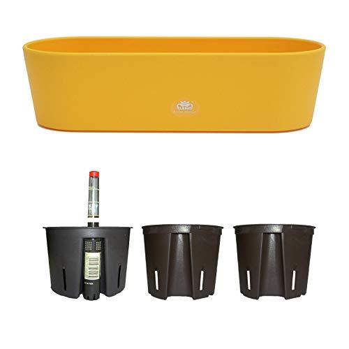 Set5 Kunststoff Flori Pflanzschale gelb für Hydrokultur L 36.0cm B 13.5cm H 11.0cm