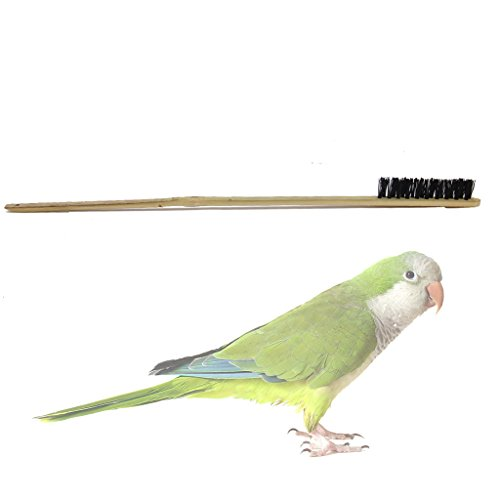 bird-cage-cleaning-brush-wooden-long-handle