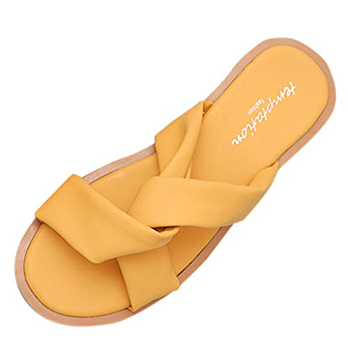 b675f54acde4 Topassion Women's Flat Casual Shoes Flip Flop Sliders Ladies Summer Sandals  Flip On Slides PU Leather