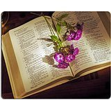 MSD Natural Rubber Gaming Mousepad IMAGE ID: 3443207 Open Bible on wooden desk with phlox stems and lamp base Vina Base