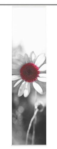 Home Fashion 87319-796 Schiebevorhang Toulon Dekostoff, 245 x 60 cm, schwarz-weiß (Weiße Und Schwarze Blumen-vorhänge)