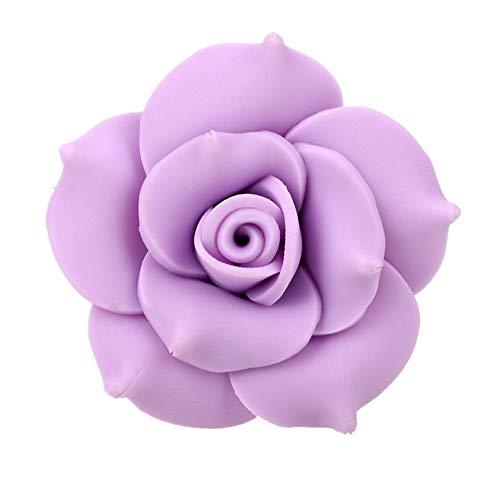DC CLOUD Auto-Parfüm-Clip Parfüm-Clip Duft Air Vent Medaillon-parfüm-Clip Auto-Teile-parfüm-Clip Lufterfrischer Luftreiniger Deko-parfüm-Clip Clip Parfüm Purple - Auto-ausdrücke Vent