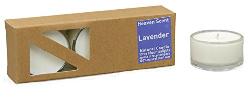 3x Beduftete Natural Lavender Plant Wax Tealights in recycled glass covers Pleasant...