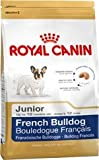 Royal Canin French Bulldog 30 Junior 10 kg, 1er Pack (1 x 10 kg)
