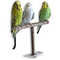 Anflughilfe/Anflugstange für den Vogelkäfig oder die Voliere. Tolles, handgemachtes Vogelzubehör aus bestem Naturholz