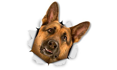 Winston & Bear Perro 3D pegatinas - Pack 2 - Pastor Alemán curioso para pared, pegatinas de perro de pastor alemán de nevera