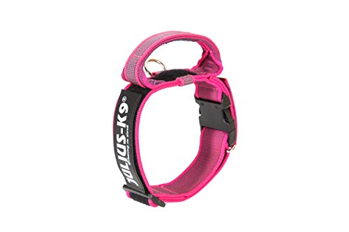 Julius-K9 - Collar para Perro, Rosa (Pink/Gray), 40 mm*38-53 cm