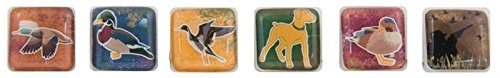 Unbekannt Karen Foster Design Scrapbooking Chilly Cubes, Wasservögel, 30,5 x 30,5 cm -