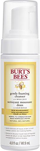 Burt's Bees Nährende, sanfte schäumende Gesichtsreinigung, 1er Pack (1 x 142 ml) (Burts Bees Peeling)