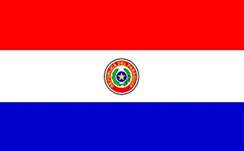 Paraguay Hand Waving Flag 10,2x 15,2cm–Hand Held paraguayischer 10,2x 15,2cm Flaggen mit Stick
