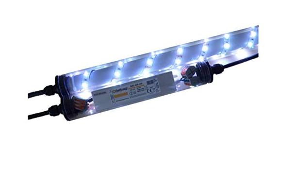 LED Leuchte f/ür Gabionen 0,5m kaltweiss 360/°
