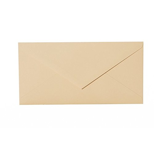 25-envelopes-in-format-din-lang-110x220-mm-fur-100x200-mm-10-x-20-cm-cards-color-camel