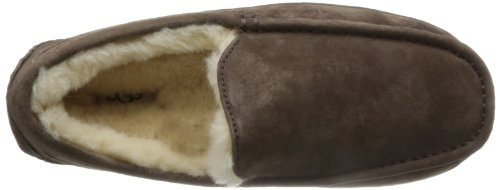 Ugg Ascot 5775, Chaussons homme Esp