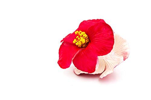 Pinza-para-el-pelo-con-flor-de-hibiscus-tejido-y-plstico-accesorio-para-el-pelo-color-rojo
