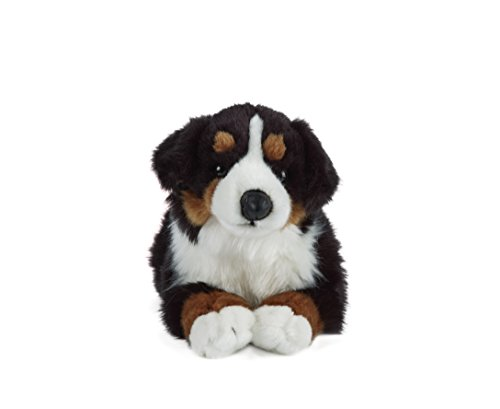 Bernese Mountain Dog soft toy. 35cm
