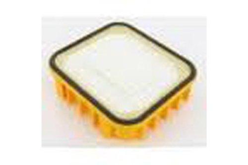 Genuine ELECTROLUX Hepa Abluftfilter EF105 4071431961 (Electrolux Abluftfilter)