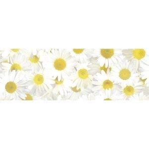 Ludwig Bähr 5 x Transparentpapier 115g/qm A4 VE=5 Blatt Flora Margeriten