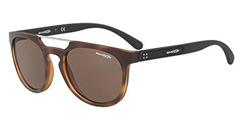 Arnette AN4237 2375/73 - Woodward, Matte Havana/Brown, 52mm, Sunglasses
