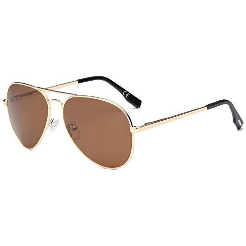 (AMZTM Klassisch Mode Doppelbrücke Metall Rahmen Pilotenbrille Verspiegelt REVO Dunkelbraun Linsen Polarisiert Damen Und Herren Aviator Sonnenbrille)