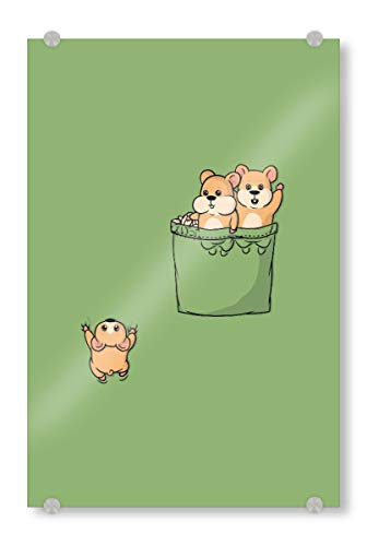 artboxONE Acrylglasbild 150x100 cm Tiere Cute Pocket Hamsters - Bild Pocket Pocket Hamster Hamster (Little Pet Shop-hamster)
