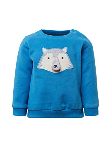TOM TAILOR für Jungen Strick & Sweatshirts Sweatshirt mit Artwork nebulas Blue Blue, 86 -
