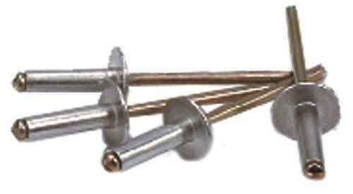 Set 250 rivetti alluminio testa extra larga mm 4,8x20 e-100 utensileria manuale