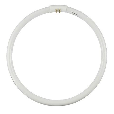FCT5-40W-D Daylight 6400K - Wattage: 40W, Type: T5 Circular Fluorescent,