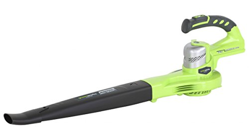 Greenworks 24v Grass Trimmer, Blower, 2Ah Battery and Charger
