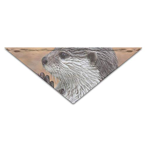 Lovely Prayer Otter Turban Triangle Scarf Bib Scarf Accessories Pet Cat and Baby Puppy Saliva Dog - Otter Baby Kostüm