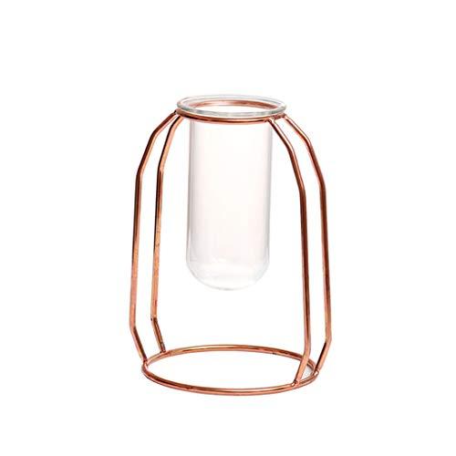 droponische Glasvase Hängevase mit Roségold Geometrische Metallgestell, Vintage Blumen Pflanze Dekorationen Großartig für tischdeko Wohnzimmer Zuhause Büro Party Hochzeit Deko (B) ()