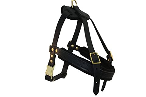Leather Dog Harness, Small, Black (Aspen), 100% Genuine English Bridle Leather, For Breeds 30-50 lbs. Chest: 26-31 in, Neck:18-24 in, Chest